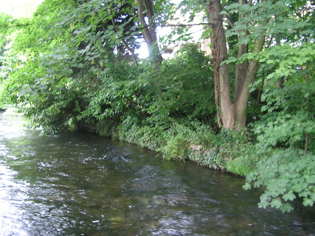 The River Itchen today