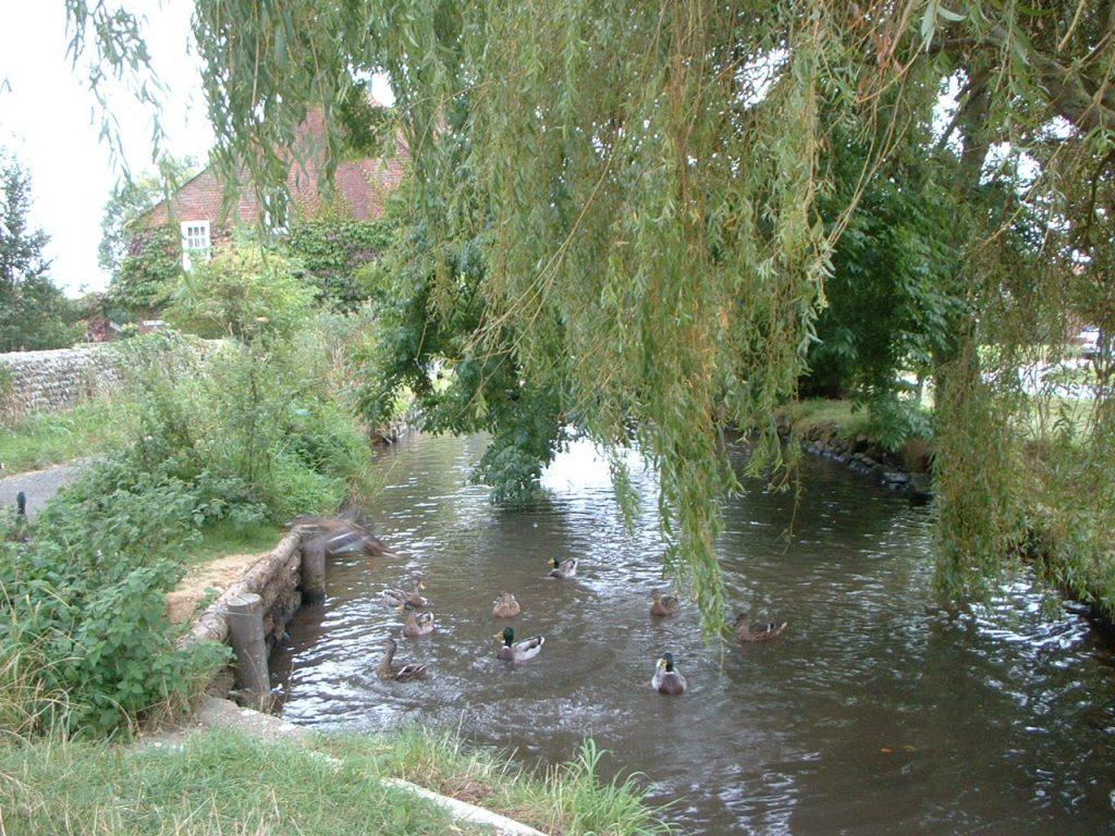 Stream near Holy Trinity Church, Bosham. WikimediaCommons